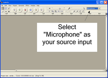 Select Microphone as your Audio Input